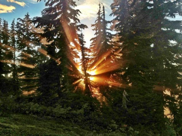 Sunsplosion